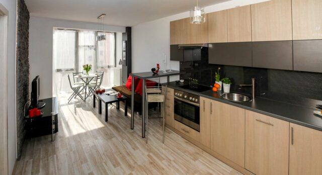 Apartment - kuchnia z salonem