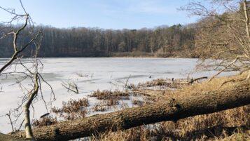 Jezioro Kociołek (Wielkopolski Park Narodowy)