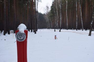 Leśny wodociąg w Pecnej (gmina Mosina) - jeden z hydrantów
