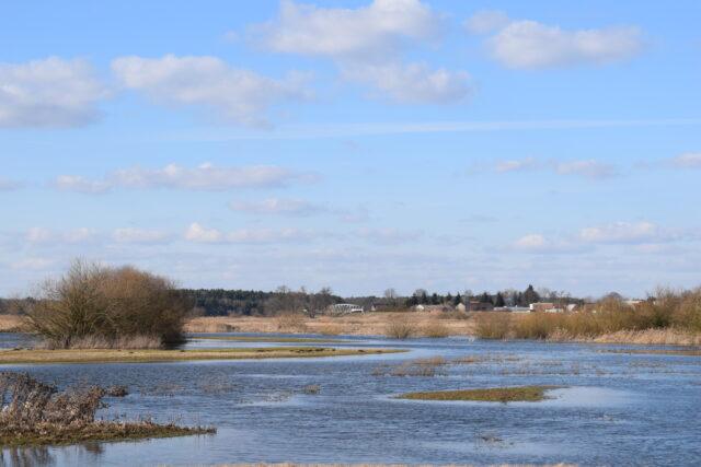 Na łąkach pojawiają się też duże rozlewiska.