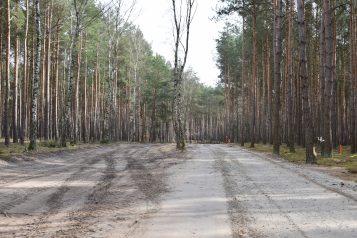 Utwardzona droga przy leśnym wodociągu w Pecnej