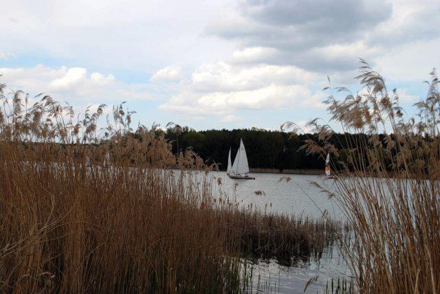 Regaty na jeziorze Dymaczewskim