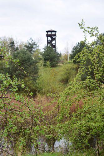Wieża widokowa na Pożegowie wiosenną porą
