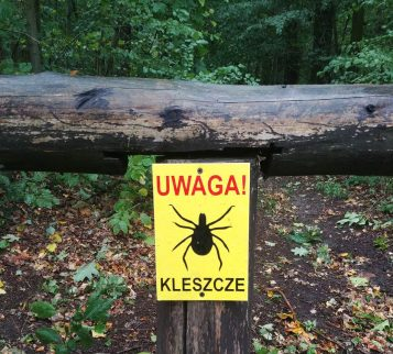 Kleszcze - tabliczka przed wejściem do lasu